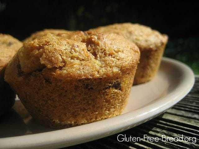 Antioxidant Rich Gluten-Free Applesauce Carrot Muffins
