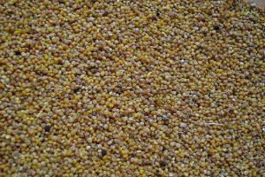 gluten free susbstitutes quinoa