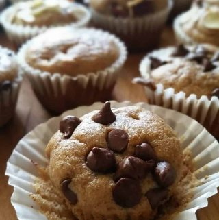 Blender Gluten Free Mini Muffins with Chocolate Chips in a muffin cup.