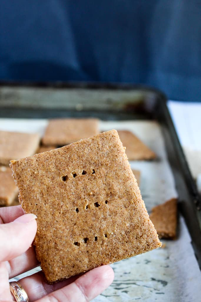 low carb gluten free graham crackers ready to eat.