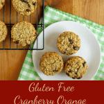 Delicious Gluten Free Cranberry Orange Muffins