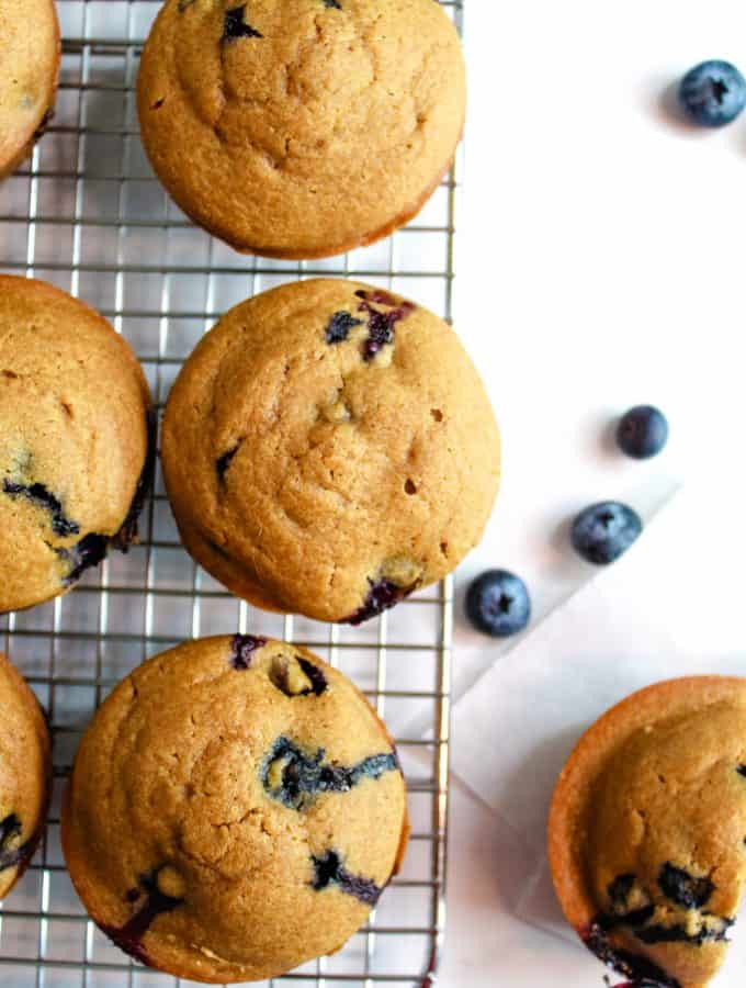 The Best Gluten Free Lemon Blueberry Muffins