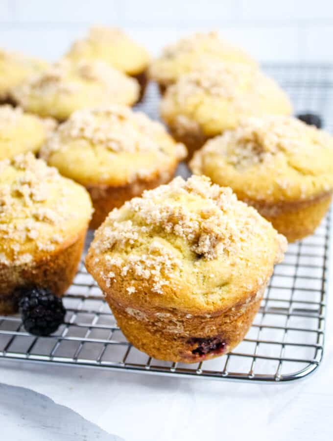 side shot of blackberry muffins